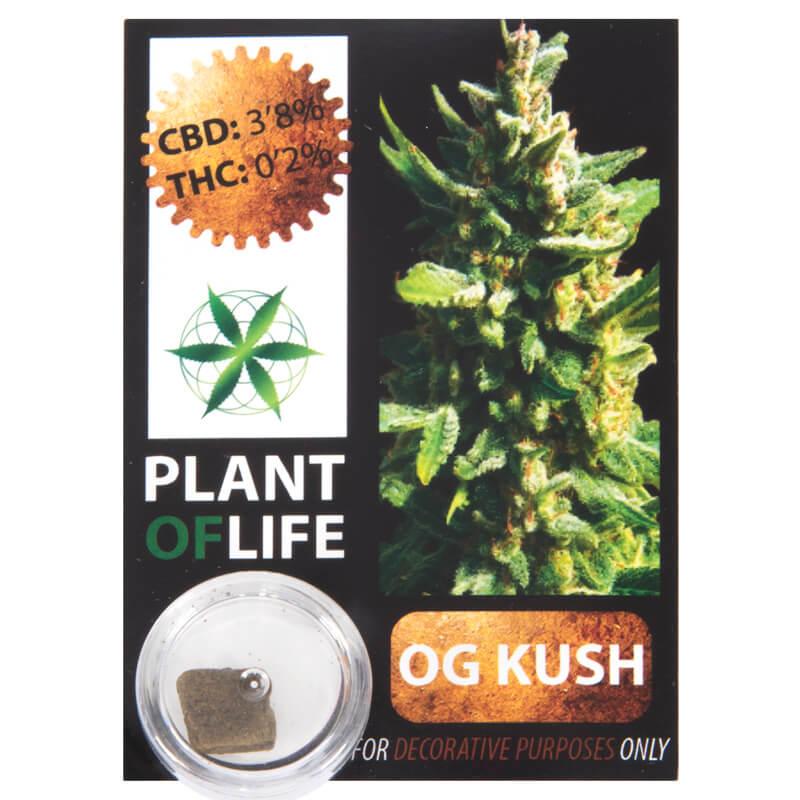 3,8 % CBD Solid O.G. Kush