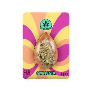 Legal Weed Amnesia 1 gr - 22% CBD