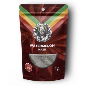 Marley Hemp Flower Watermelon Haze 1gr - 41% CBD